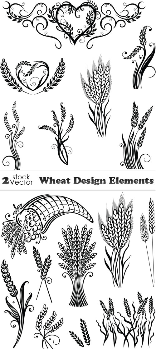 Vectors - Wheat Design Elements