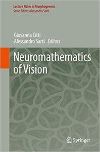 Neuromathematics of Vision (Repost)