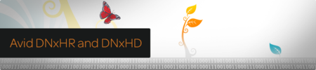 Avid DNxHR v.1.0.1 and DNxHD QT CODECs Pack PE v.2.7.0
