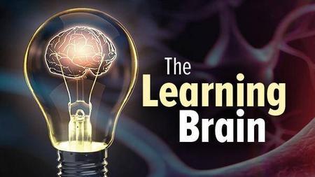 TTC Video - The Learning Brain
