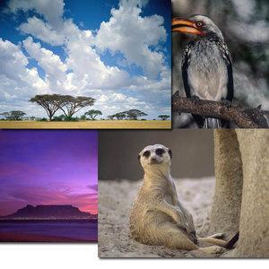 Webshot - Africa Series - High Quality (HD)