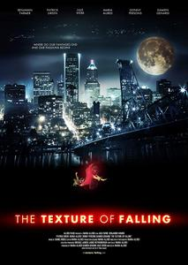 The Texture of Falling (2018)
