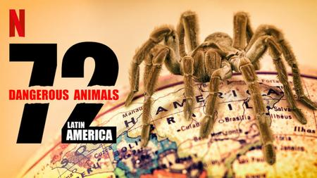 72 Dangerous Animals: Latin America S01