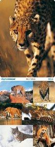 Digital Vision   DV246   Wild Things