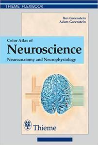 Color Atlas of Neuroscience: Neuroanatomy and Neurophysiology (Repost)