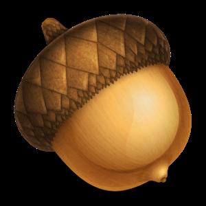 Acorn 6.5.3
