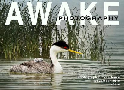 Awake Photography - November 2019