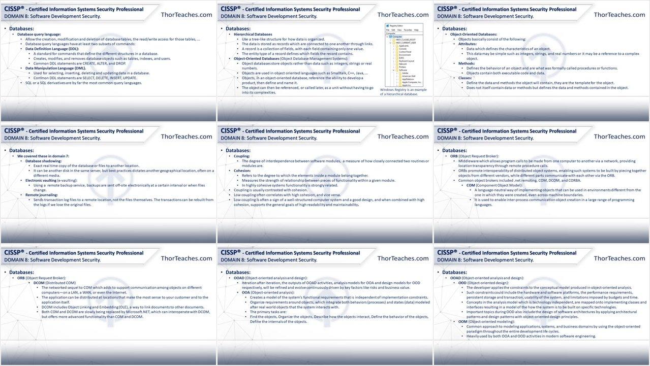 Cissp 174 Certification Domain 8 Software Development