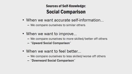 Udemy - Learn Social Psychology