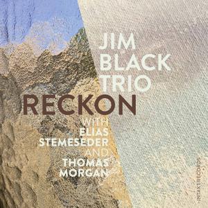 Jim Black Trio with Jim Black, Elias Stemeseder, Thomas Morgan - Reckon (2020) [Official Digital Download 24/88]