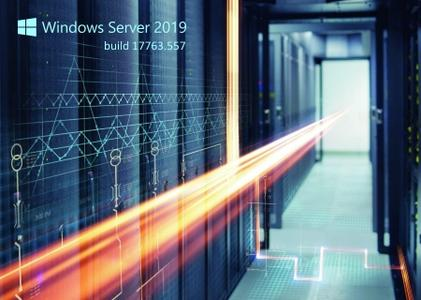 Windows Server 2019 build 17763.557