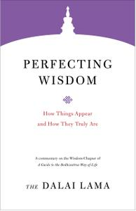 Perfecting Wisdom: How Things Appear and How They Truly Are (Core Teachings of Dalai Lama)