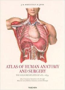 Atlas of Human Anatomy and Surgery (25th Edition)