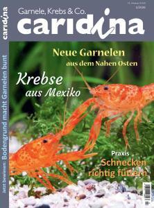 Caridina - Nr.2 2020