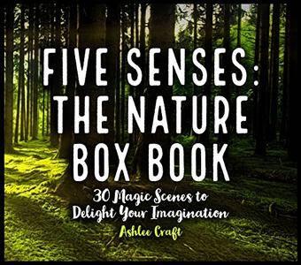 Five Senses: The Nature Box Book: 30 Magic Scenes to Delight Your Imagination