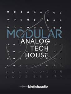 Big Fish Audio Modular: Analog Tech House KONTAKT