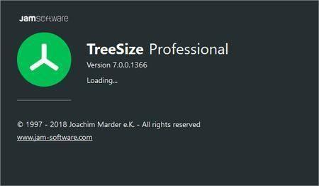 TreeSize Professional 7.1.3.1467 Multilingual