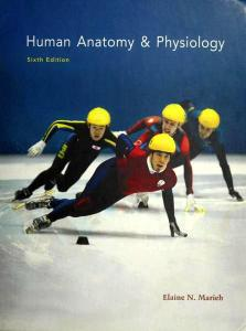 Human Anatomy & Physiology, 6th Edition