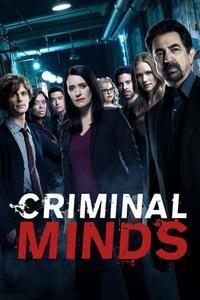 Criminal Minds S04E15