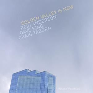 Reid Anderson, Dave King & Craig Taborn - Golden Valley Is Now (2019) [Official Digital Download 24/48]