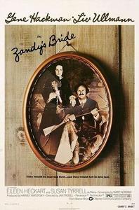 Zandy's Bride (1974)