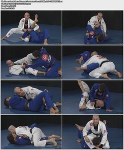 Gracie Barra Advanced Curriculum