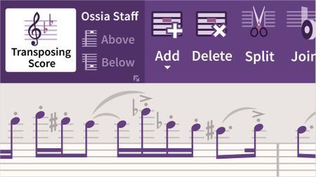 Sibelius Ultimate 2019 Essential Training: Beyond the Basics