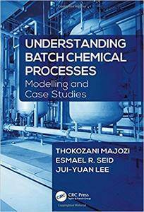 Understanding Batch Chemical Processes: Modelling and Case Studies