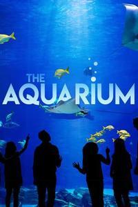 The Aquarium S01E02