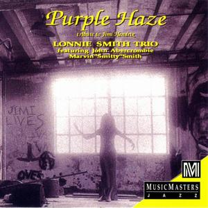 Lonnie Smith Trio - Purple Haze: Tribute to Jimi Hendrix (1995)