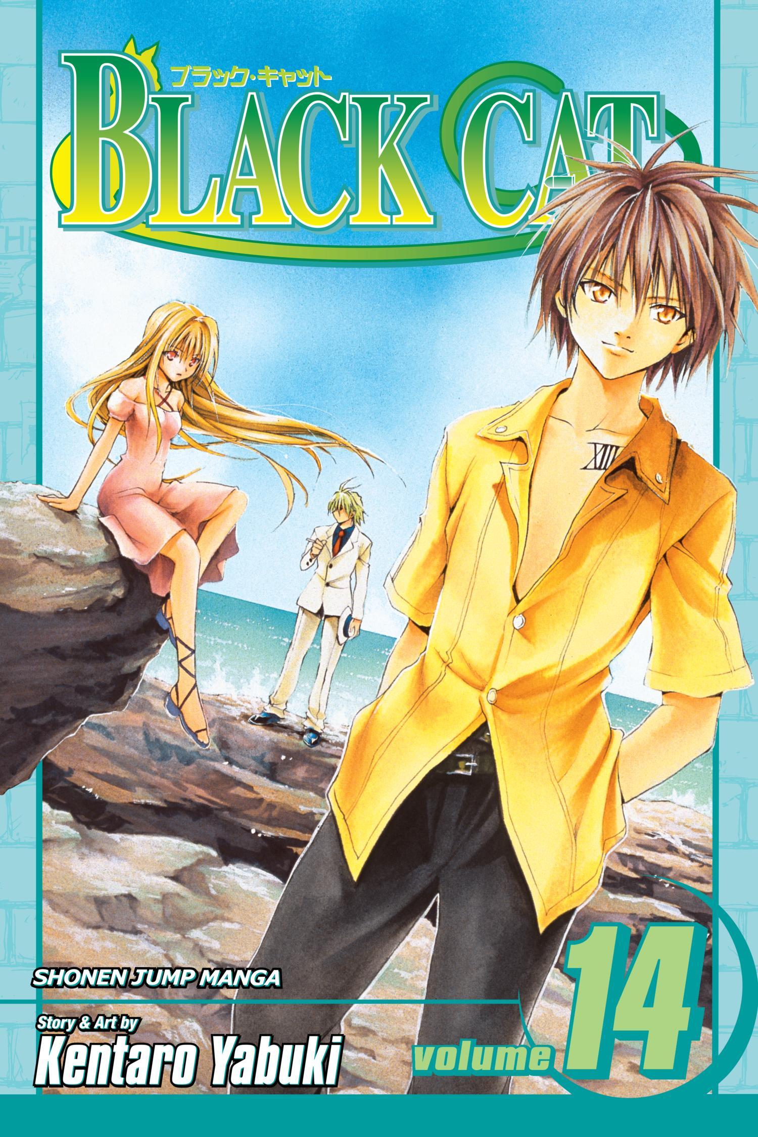Black Cat v14 (2008) (Digital) (aKraa