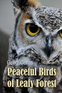 «Peaceful Birds of Leafy Forest: Ambient Sounds for Relaxation and Focus» by Greg Cetus