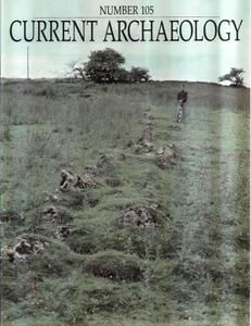 Current Archaeology - Issue 105