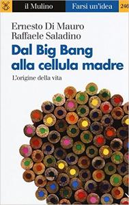 Dal Big Bang alla cellula madre. L'origine della vita - Ernesto Di Mauro - Raffaele Saladino