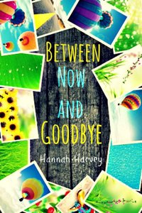 Between Now and Goodbye