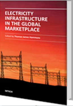 Electricity Infrastructures in the Global Marketplace