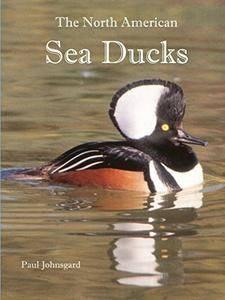 The North American Sea Ducks