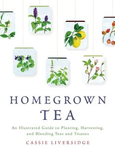 Homegrown Tea: An Illustrated Guide to Planting, Harvesting, and Blending Teas and Tisanes (Repost)