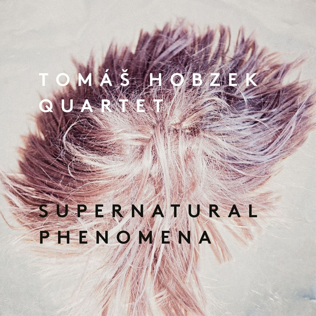 Tomáš Hobzek Quartet - Supernatural phenomena (2019)