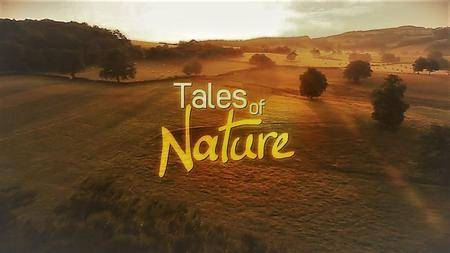 Arte - Tales of Nature: Series 1 (2013)