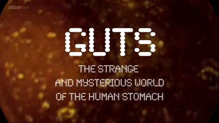 BBC - Guts: The Strange and Wonderful World of the Human Stomach (2012)