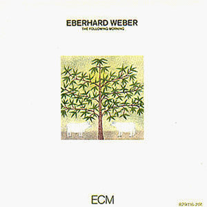 Image result for weber following morning