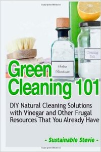 Green Cleaning 101: DIY Natural Cleaning Solutions (repost)