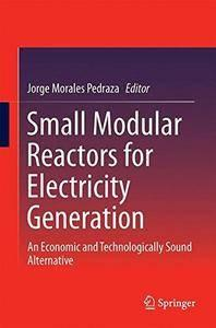 Small Modular Reactors for Electricity Generation: An Economic and Technologically Sound Alternative [Repost]