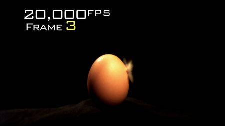 Discovery: Time Warp. Season 1 /  Discovery: Искривление времени. 1 сезон (2008) [ReUp]