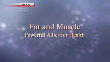 NHK - THE BODY: Fat and Muscle - Powerful Allies for Health (2018)