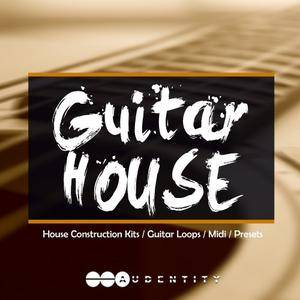 Audentity Records GUITAR HOUSE WAV MiDi Spire Harmor and Serum Presets