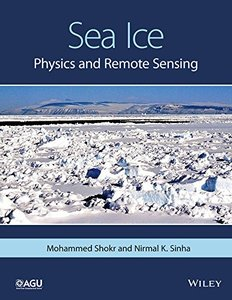 Sea Ice: Physics and Remote Sensing (repost)