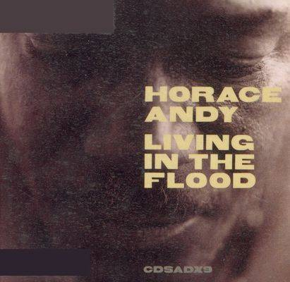 Horace Andy - Living In The Flood (1999)