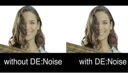 RevisionFX DE:Noise for OFX 3.0.10